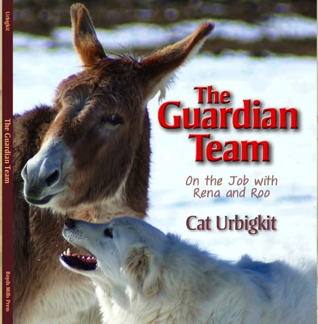 Cat Urbigkit THe GUARDIAN TEAM BOOK COVER
