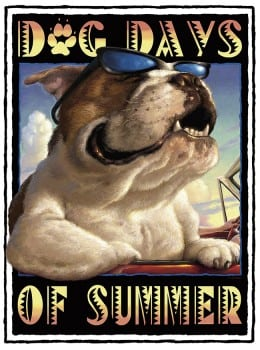 DogDaysOfSummerThrifty