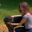 Meg & Trouper, garden