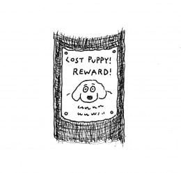 Lost Dog - Plot Description Drawing
